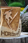 drevorezba-carving-wood-drevo-cena-horeckyfest2019-radekzdrazil-01