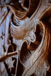 drevorezba-vyrezavani-rezani-carving-wood-drevo-erb-emblem-rdekzdrazil-20200401-011