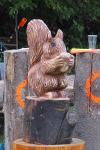 drevorezba-vyrezavani-rezbar-carving-wood-drevo-socha-veverka