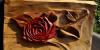 Řezba - kolortovaná růže