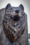 drevorezba-carving-wood-drevo-busta-vlk-hlava-vyrezavani-rezbar-radekzdrazil-20201102-04