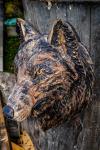 drevorezba-carving-wood-drevo-busta-vlk-hlava-vyrezavani-rezbar-radekzdrazil-20201102-06