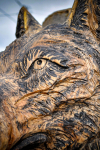 drevorezba-carving-wood-drevo-busta-vlk-hlava-vyrezavani-rezbar-radekzdrazil-20201102-08