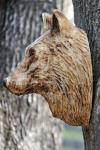 vlk-drevorezba-plastika-vyrezavani-carwing-woodcarving-trofej-hlava-radekzdrazil-20190331-01