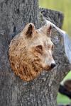 vlk-drevorezba-plastika-vyrezavani-carwing-woodcarving-trofej-hlava-radekzdrazil-20190331-05