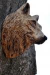 vlk-drevorezba-plastika-vyrezavani-carwing-woodcarving-trofej-hlava-radekzdrazil-20190331-09
