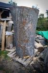 drevorezba-vyrezavani-carving-wood-drevo-socha-vcely-klat-ambroz-radekzdrazil-20201025-09