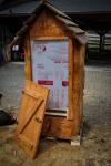 drevorezba-vyrezavani-carving-wood-drevo-socha-vceli-klat-radekzdrazil-20210423-011