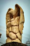 drevorezba-krkavec-vyrezavani-sochy-woodcarving-01