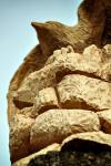 drevorezba-krkavec-vyrezavani-sochy-woodcarving-03