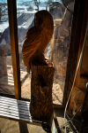rezbar-drevorezba-vyrezavani-carving-wood-drevo-socha-bysta-sova_palena-110cm-radekzdrazil-20210220-09