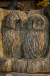 rezbar-drevorezba-vyrezavani-carving-wood-drevo-socha-sovy-radekzdrazil-20210104-06