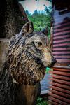 drevorezba-carving-wood-drevo-busta-vlk-hlava-vyrezavani-rezbar-radekzdrazil-02