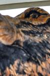 drevorezba-carving-wood-drevo-busta-vlk-hlava-vyrezavani-rezbar-radekzdrazil-08