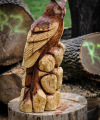 drevorezba-carving-wood-drevo-vyrvelky-bubo-jablon-radekzdrazil-01