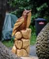 drevorezba-carving-wood-drevo-vyrvelky-bubo-jablon-radekzdrazil-012