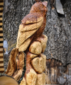 drevorezba-carving-wood-drevo-vyrvelky-bubo-jablon-radekzdrazil-013
