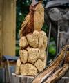 drevorezba-carving-wood-drevo-vyrvelky-bubo-jablon-radekzdrazil-03