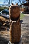 drevorezba-vyrezavani-carving-wood-drevo-socha-zaba-radekzdrazil-20210410-04