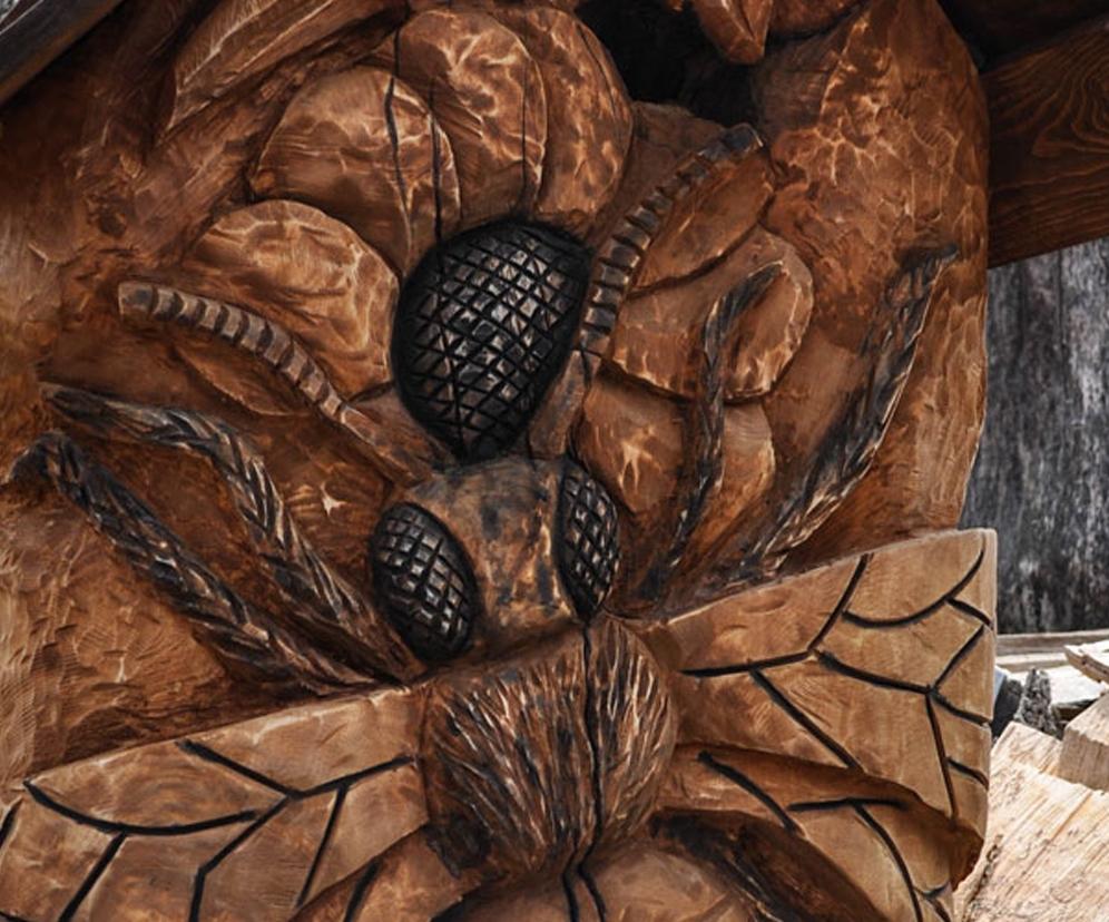 včelí klát